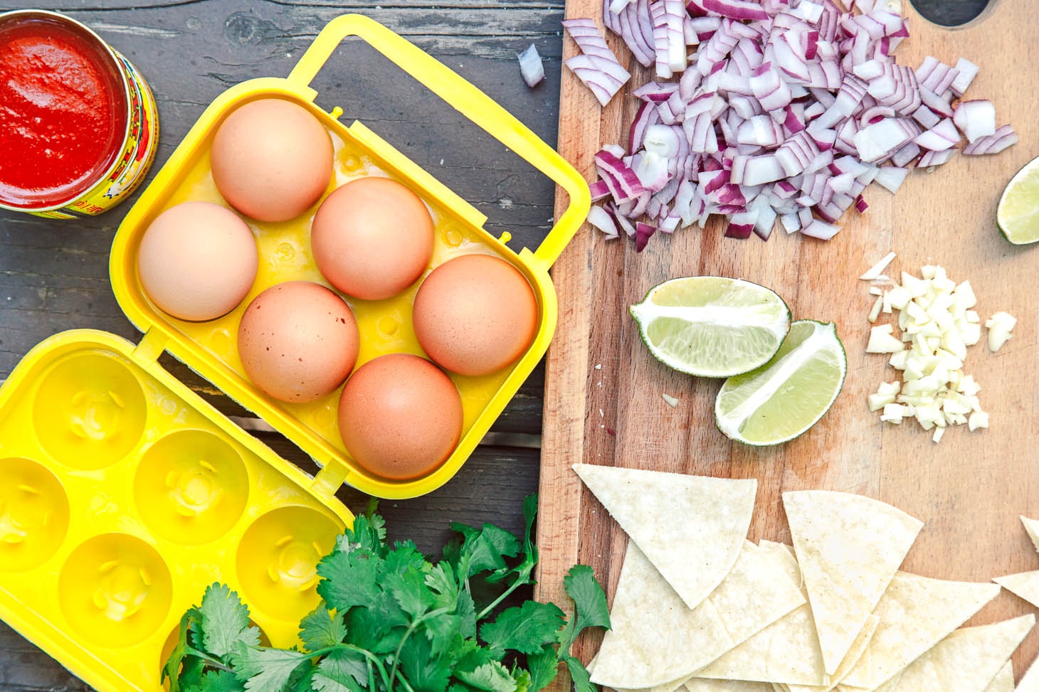 Ingredients for Camping Chilaquiles