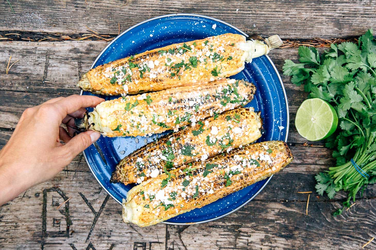Elotes - grilled Mexican street corn - are a great appetizer to cook over the campfire!