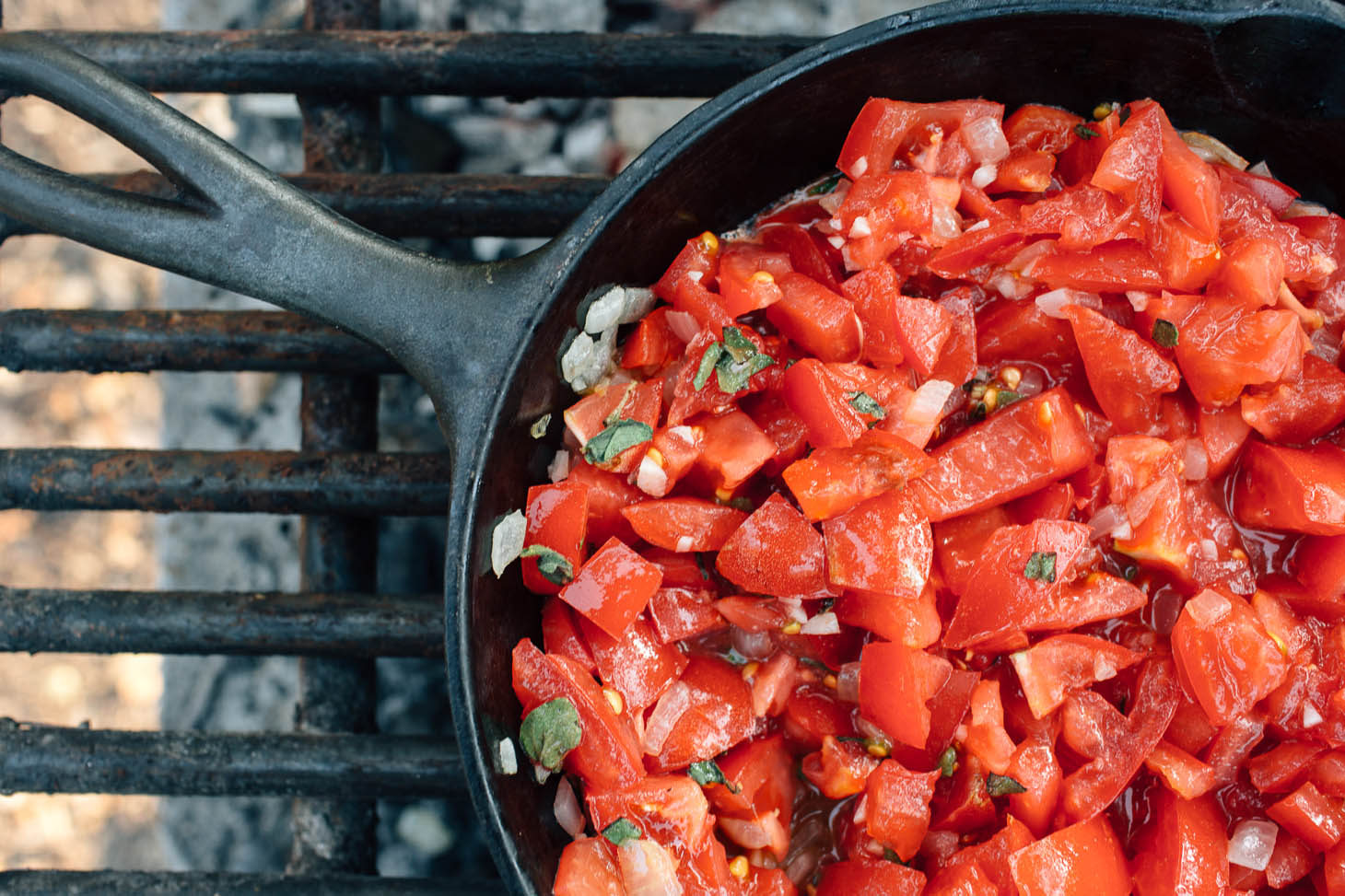 A fresh and flavorful homemade tomato sauce to serve with grilled Ratatouille campfire kebabs