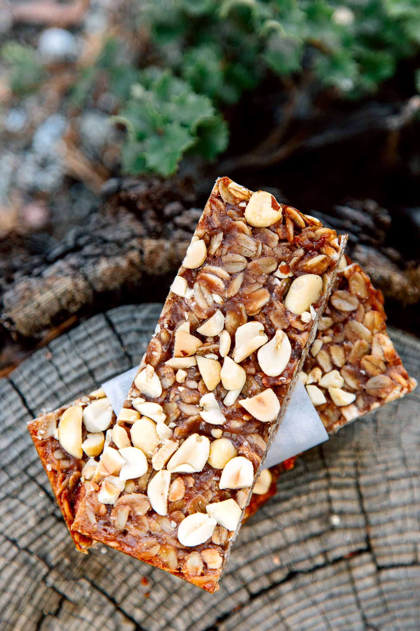 Peanut Butter and Jelly Granola Bars Recipe